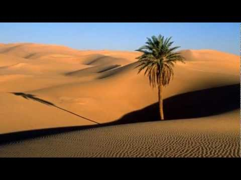 Sting feat Cheb Mami - Desert Rose (Official Music Video)