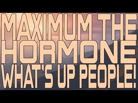 Maximum the Hormone - What's Up People! (Instrumental Cover)