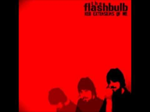 The Flashbulb - If Trees Could Speak ( Extended)