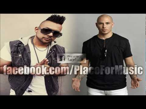 Sean Paul feat. Pitbull - She Doesn't Mind (Official Remix)